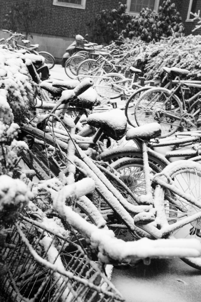 bw bikes